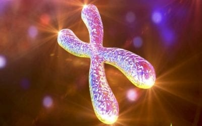 Telomeres: Anti-Aging Secrets To Improve Your Health & Longevity