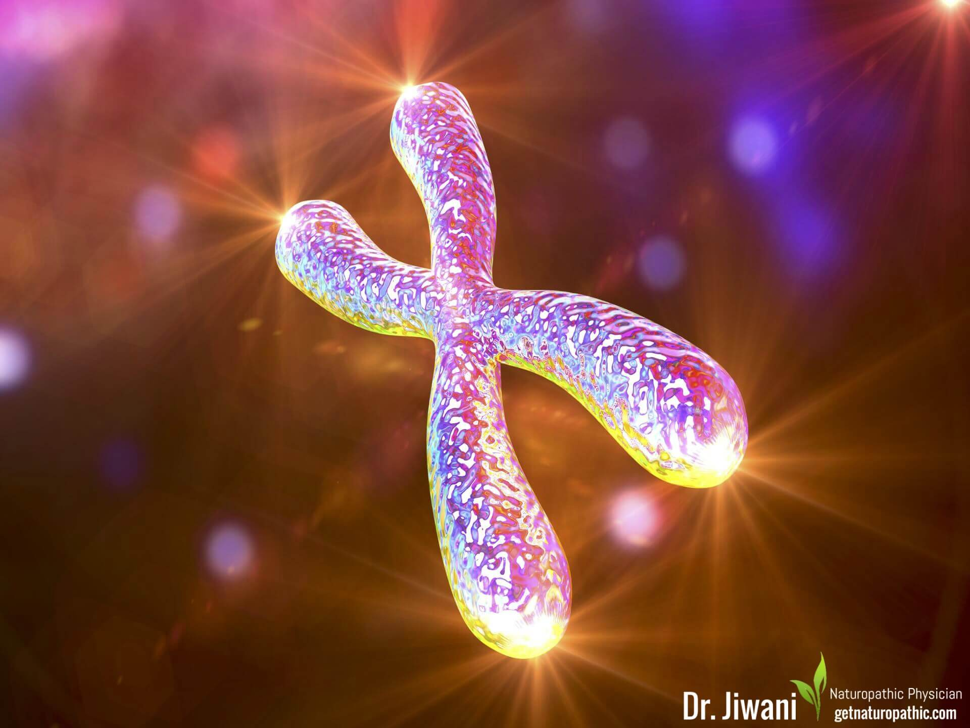 Telomeres: Anti-Aging Secrets To Improve Your Health & Longevity| Dr. Jiwani's Naturopathic Nuggets Blog