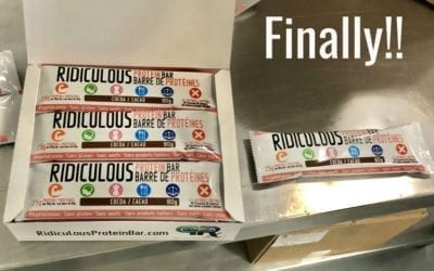 Ridiculous Protein Bar (High Protein 26g Low Carb Vegan Organic Gluten-Free Dairy-Free Soy-Free Corn-Free)