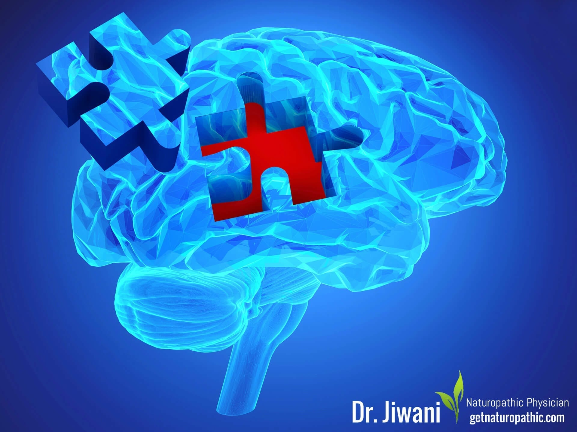 Intermittent Fasting for Health, Energy & Weight Loss Brain Function* | Dr. Jiwani's Naturopathic Nuggets Blog